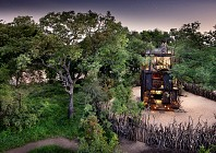 TRAVEL INTEL: Sleep in the treetops in Kruger National Park