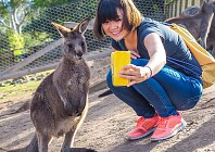 Take the family Down Under in 2019
