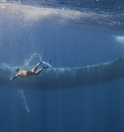 Guests honed their camera skills in the Maldives with a Blue Planet videographer