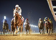 Our VIP guide to the Dubai World Cup 2017