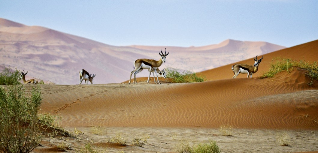 Sonop Namibia - Zannier Hotels